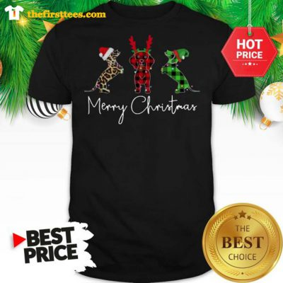 Official Dachshund Leopard Plaid Printed Merry Christmas Shirt - Design by Thefristtees.com