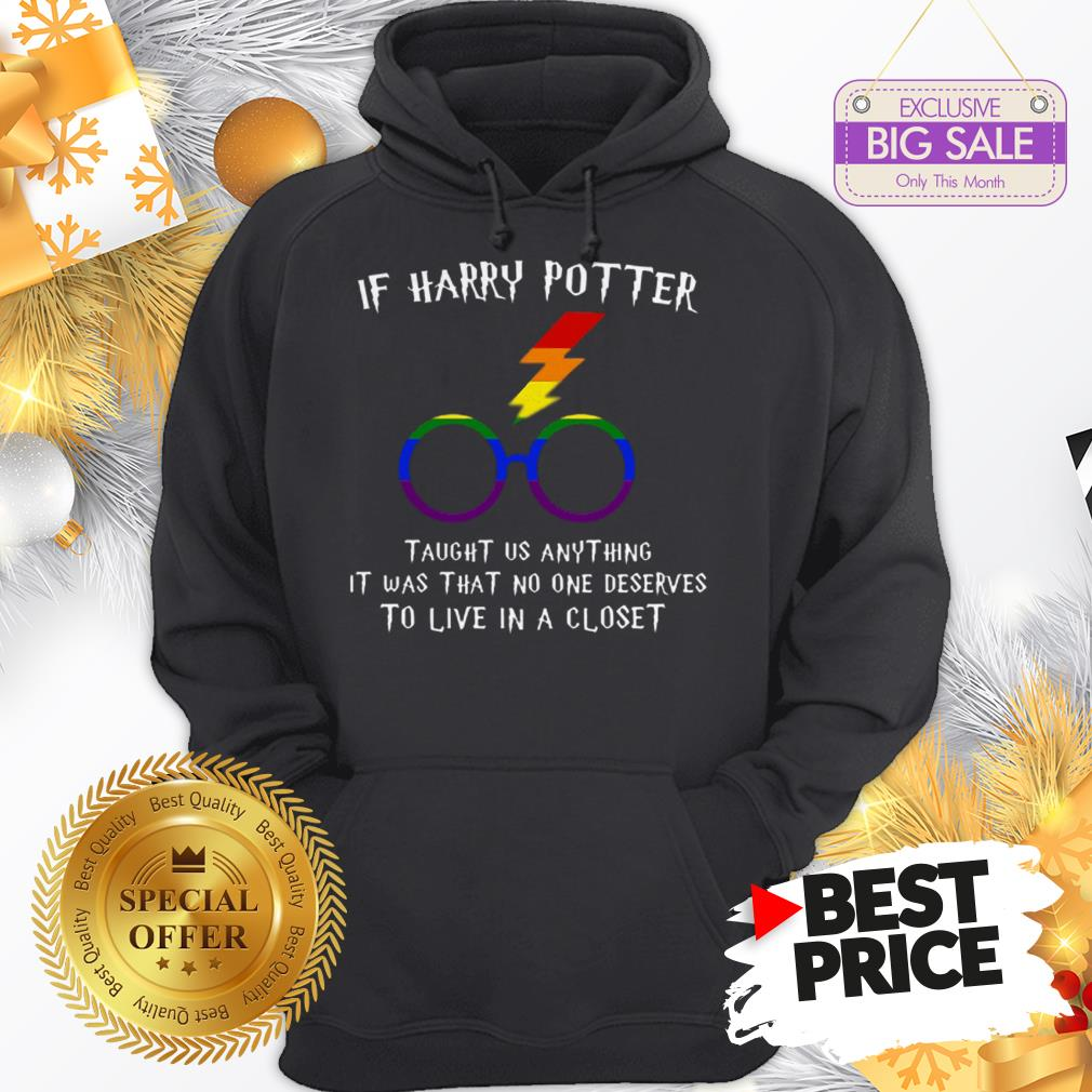 Happy LGBT If Harry Potter Taught Us Anything It Was That No One Hoodie