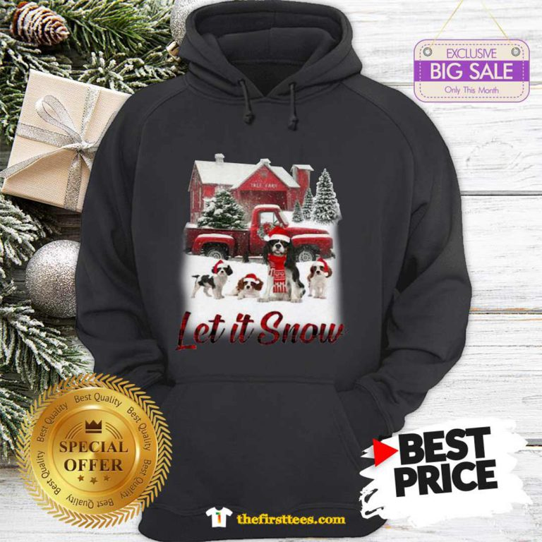 Pretty Cavalier King Charles Spaniel Let It Snow Christmas Hoodie - Design by Thefristtees.com