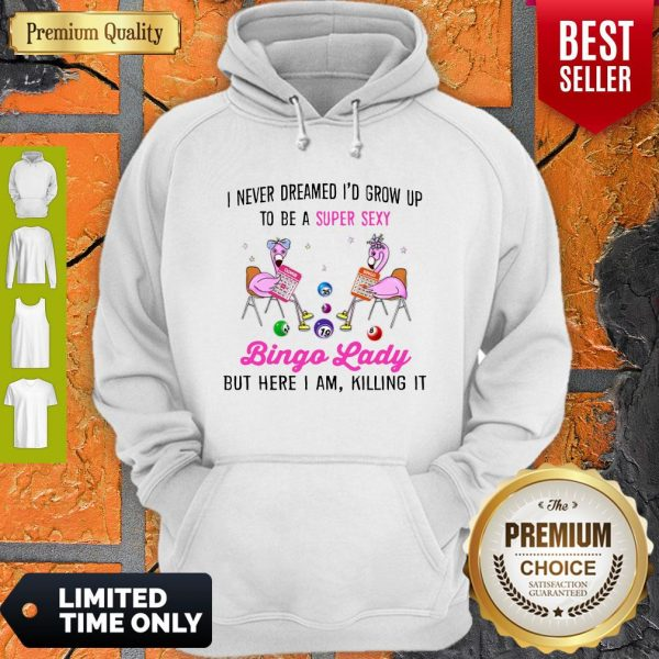 I Never Dreamed I'd Grow Up To Be Super Sexy Bingo Lady Flamingos Hoodie