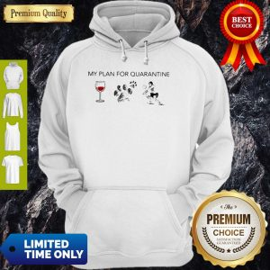 My Plan For Quarantine Wine Paws Dog And Volleyball Hoodie