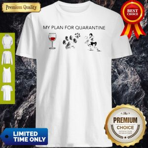 My Plan For Quarantine Wine Paws Dog And Volleyball Shirt