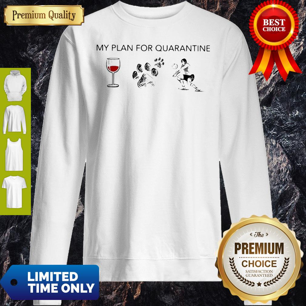 My Plan For Quarantine Wine Paws Dog And Volleyball Sweattshirt