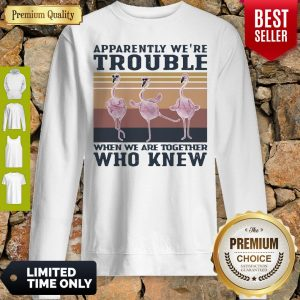 Flamingo Apparently Were Trouble When We Are Together Who Knew Vintage Sweatshirt