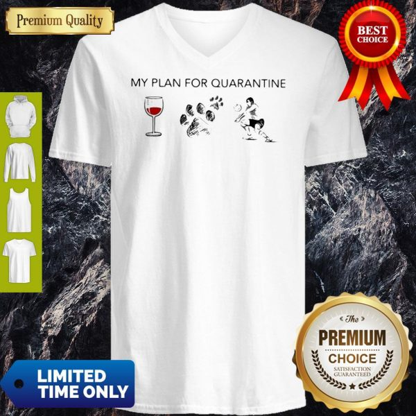 My Plan For Quarantine Wine Paws Dog And Volleyball V-neck