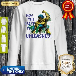 Awesome Beast Is Unleashed Street Fighter Sweatshirt