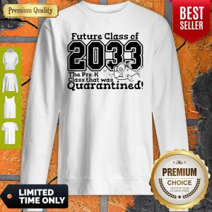 Pre Kindergarten Class Of 2033 Fish Digital Cutting File Pre-K Quarantine Sweatshirt