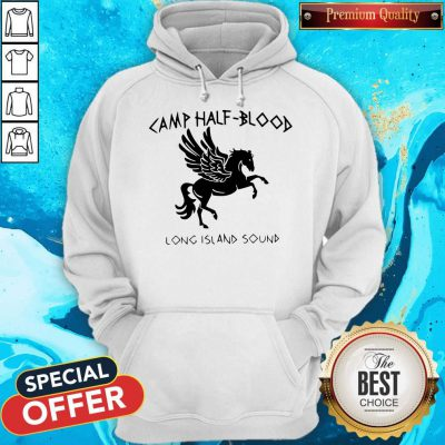 Awesome Horse Camp Half Blood Long Island Sound Hoodie