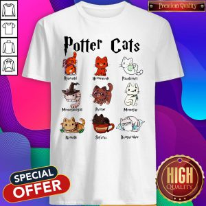 Funny Potter Cats Rawrnald Hermeownle Pawdamort Shirt