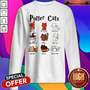 Funny Potter Cats Rawrnald Hermeownle Pawdamort Sweatshirt