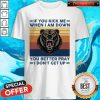 Lion If You Kick Me When I Am Down I Don't Get Up Vintage Shirt