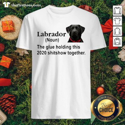 Hot Labrador The Glue Holding This 2020 Shitshow Together Shirt - Design By Thefirsttee.com