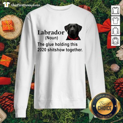 Hot Labrador The Glue Holding This 2020 Shitshow Together Sweatshirt - Design By Thefirsttee.com