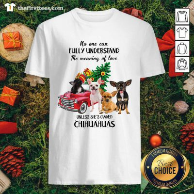 No One Can Fully Understand The Meaning Of Love Chihuahuas Christmas Shirt - Design by Thefirsttees.com