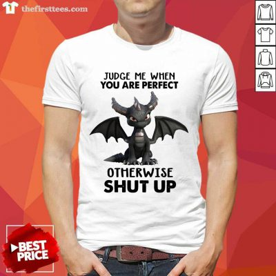 Tootle Dragon Judge Me When You Are Perfect Shirt